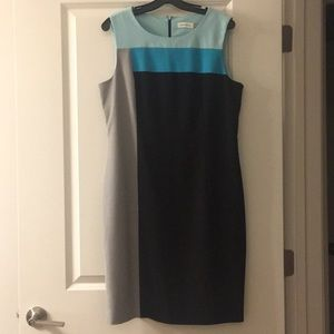 Calvin Klein Dress - Professional Chic